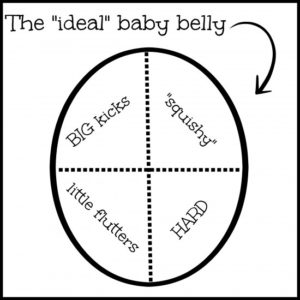 the ideal baby belly