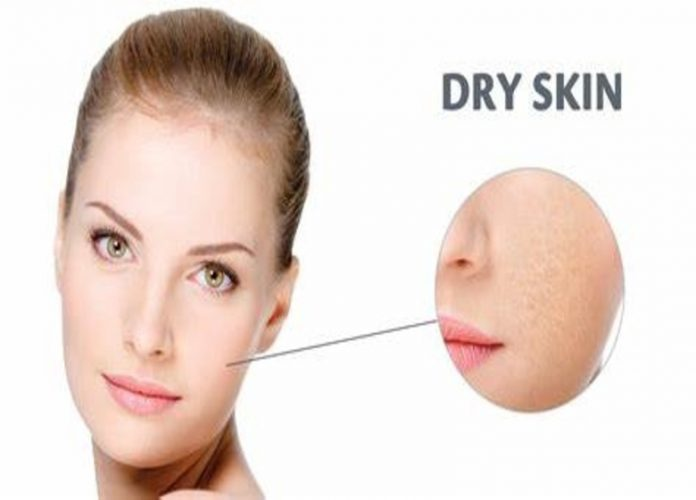 ayurvedic treatment for dry skin