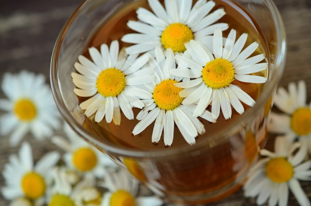 Benefits Of Chamomile Tea For Babies